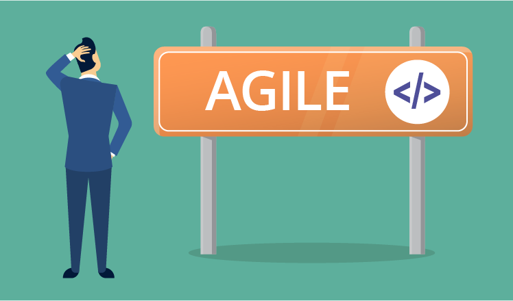 What is Agile software development from customer's perspective