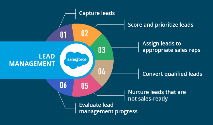 Salesforce Lead Management Tips And Best Practices