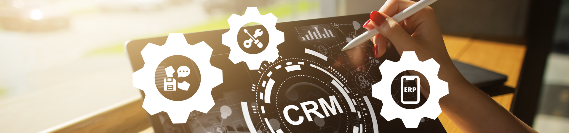 Microsoft Dynamics CRM Customization and Support for a Multi-business Company