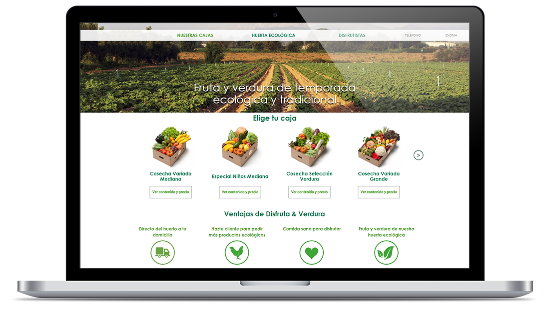 E-shop for a Spanish Company Providing Organic Fruit and Vegetable Delivery Service