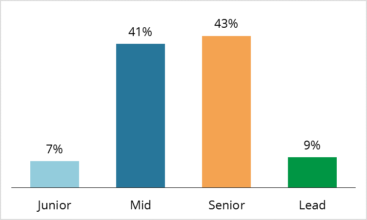 ScienceSoft employees by seniority